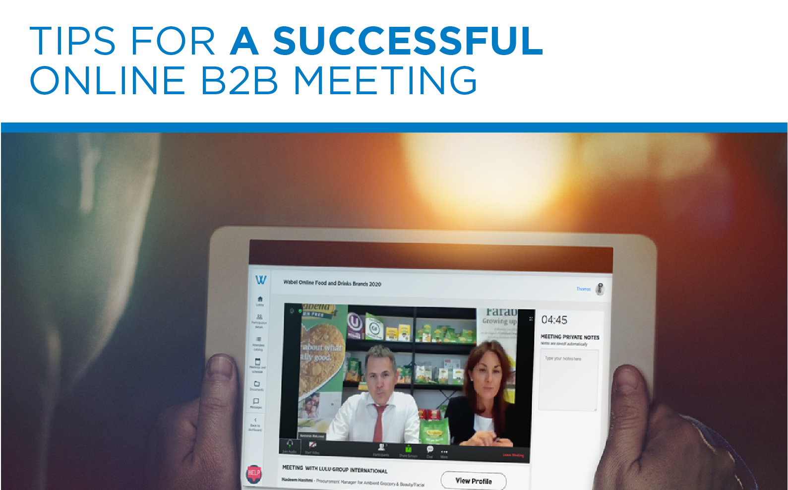 Tips for a successful online B2B meeting